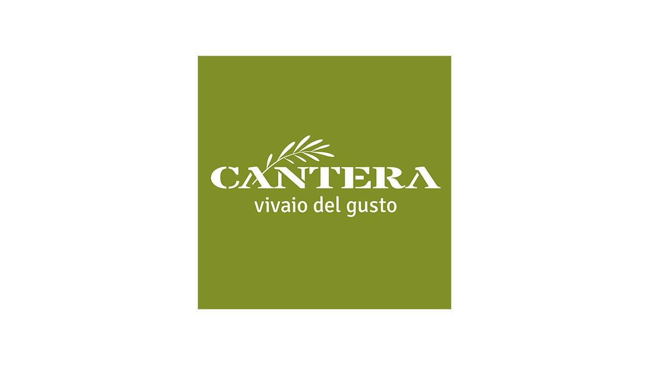 Cantera